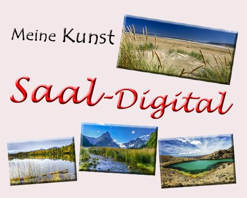 Saal-Digital   Thomas Hagenau