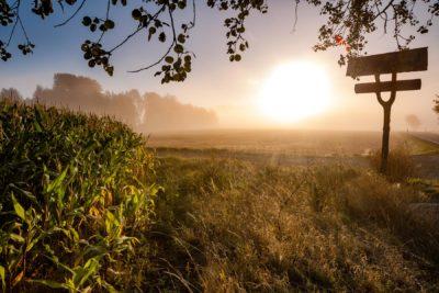 Sonnenaufgang nahe Burgk